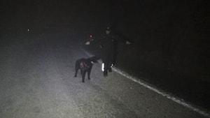 3 kişiyi öldürüp sosyal medyada canlı yayın yapan katil zanlısına köpekli arama başlatıldı