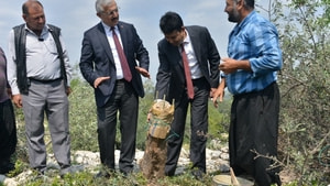 Mersin'de deliceler aşılanarak ülke ekonomisine kazandırılıyor