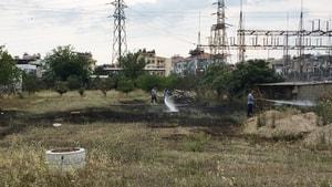 Milas'ta otluk arazide yangın