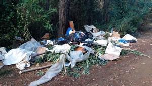 10 TL vermemek için çöpleri ormana attılar