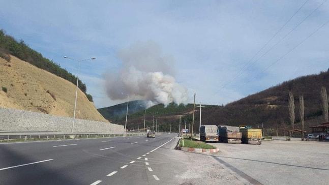 Orman yangınları Aralıkta da devam etti